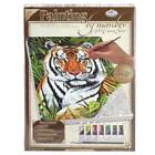 Royal & Langnickel Painting by Numbers Artist Canvas Assorted animals landscapes