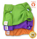 Female Dog Diapers Washable & Reusable by PETTING IS CARING - Set Pack of 3 Unit