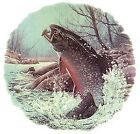 Trout Fly Fishing River Select-A-Size Waterslide Ceramic Decals Ox image