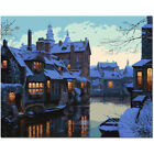 Beauty DIY Paint By Number Kit Acrylic Oil Painting On Canvas Art Decor BVG