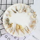Women Earrings Aolly Pearl Shell Eardrop Dangle Earring Geometric Hoop Jewelry