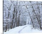 Road Across Snow-Covered Forest, Canvas Wall Art Print, Tree Home Decor