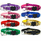 Pet Cat Collar With Bell Fashion Adjustable Sequin Collar Neck Strap Pet Supplys
