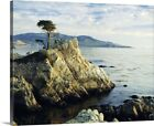 The Lone Cypress Tree on the coast, Canvas Wall Art Print,  Home Decor