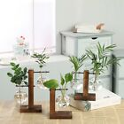 Cutting Propagation Vase Stand Home Decor Indoor Plant hydroponic Plant Vase New