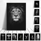 Canvas Painting Animal Wall Art Lion Elephant Deer Zebra Posters and Prints Wall