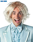 DUMB AND DUMBER MOVIE  - HARRY or LLOYD WIG - COSTUME ACCESSORY - WIGS