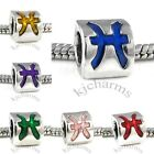 Pisces Zodiac Symbol Sign Silver European Spacer Charm Bead For Bracelet