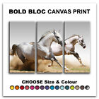 Wild Horses ANIMALS  Canvas Art Print Box Framed Picture Wall Hanging BBD
