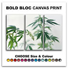 Cannabis Plants ABSTRACT  Canvas Art Print Box Framed Picture Wall Hanging BBD