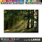 Forest Sunset LANDSCAPES  Canvas Print Framed Photo Picture Wall Artwork WA