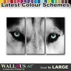 Wolf Eyes Wild ANIMALS  Canvas Print Framed Photo Picture Wall Artwork WA