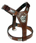 REAL LEATHER STAFF BULL TERRIER DOG HARNESS IN 8 COLORS WITH CHROME FITTINGS