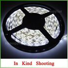 5M 12V 24W 300LEDs 3528 Cool White Strip Lighting For Decoration Car Signboard