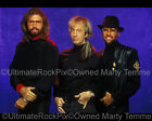 THE BEE GEES PHOTO ROBIN BARRY MAURICE GIBB Studio Portrait 1992 by Marty Temme2