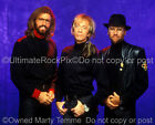 THE BEE GEES PHOTO ROBIN GIBB BARRY GIBB MAURICE GIBB by Marty Temme