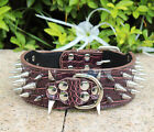 Spiked Studded Leather Dog Collar spikes S M L XL Brown,Great Quality