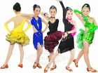 NEW Fashion Mermaid Tutu Tango Latin Salsa Ballroom Child Girls Dress Dancewear