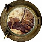 Huge 3D Porthole Exotic Lion Safari Sky View Wall Stickers Film Decal Wallpaper