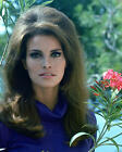 RAQUEL WELCH BEAUTIFUL RARE 60'S PHOTO OR POSTER