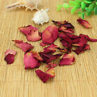 Sweet and Fragrant Red Rose Petal Flower Tea T196