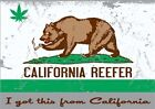CALI REEFER BEAR 420 POT GIFT T-SHIRT WEED MARIJUANA Gildan Ultra Cotton Tee