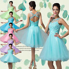 Celeb Short Lady Bridesmaids Tulle Gown Prom Party Formal /Evening Wedding Dress