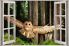 Huge 3D Window Owl Flight View Wall Stickers Film Decal Wallpaper Mural 1106