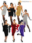Ladies 1920s Flapper Costume Sexy Womens 20's Charleston Fancy Dress Outfit