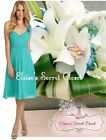 BNWT CLOVER Sea Green Turquoise Chiffon Knee Length Bridesmaid Prom Dress 6 -18