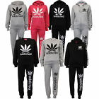 Ladies Tracksuit Womens Hooded Top Bottoms Jogging Leaf Weed Addicted Print