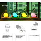 Creative Dream Birdcage LED Night Lamp USB Light Eye Protection Toy Gift 4 Color