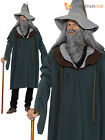 Mens Adults Gandalf Wizard Magician Hobbit Merlin Fancy Dress Costume Outfit