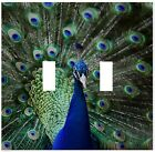 Beautiful Peacock Wallplate Wall Plate Decorative Light Switch Plate Cover