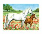 Glass Chopping Board Horse + Poppies White Horse Foal Kitchen Worktop Saver