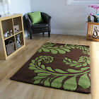 For Sale New Stunning Coffee Brown Light Green Floral Design Stylish Havana Rugs