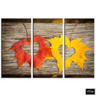 Autumn Leaves   Floral BOX FRAMED CANVAS ART Picture HDR 280gsm