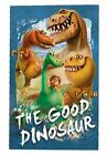 K122 BOYS NEW DISNEY FILM THE GOOD DINOSAUR ARLO WARM FLEECE BLANKET THROW GIFT
