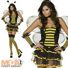 Bumble Bee Ladies Fancy Dress Animal Bug Womens Bumblebee Costume + Wings Outfit