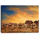 Designart - Camels in Wadi Rum  Photography Canvas Art Print
