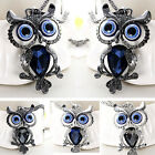 New Fashion Jewelry Crystal Owl Pendant Chain Gold Sweater Long Necklace BKB