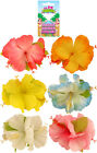 Hula Hawaiian Flower Hair Clip Fancy Dress Pack of 1/2/3/4/5