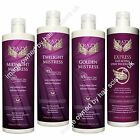Crazy Angel Tan Tanning Lotion Spray Midnight Twilight Golden Mistress ALL TYPES