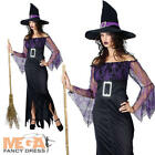 Mystical Witch Dress + Hat Ladies Halloween Fancy Dress Womens Costume Outfit