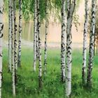 W+G Wall Mural Nordic Forest Lake Photo Poster Wallpaper Decor Art 366x254cm