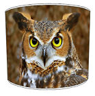 Lampshades Ideal To Match Owls Birds Duvets Owls Wallpaper & Owl Cushions