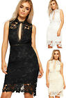 Womens Lace Lined Party Dress Ladies Knee Length Sleeveless Zip Back New 8-14