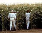8mm into inches - Field of Dreams Classic Image Baseball Players Disappear into Crops Poster/photo