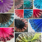 ribbon tulle - Floral Tulle Lace Trim Ribbon Embroidery Feather Wedding Fabric Sewing DIY FL82