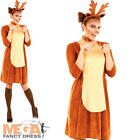 Rudolph Red Nose Reindeer Lady Ladies Fancy Dress Christmas Womens Adult Costume